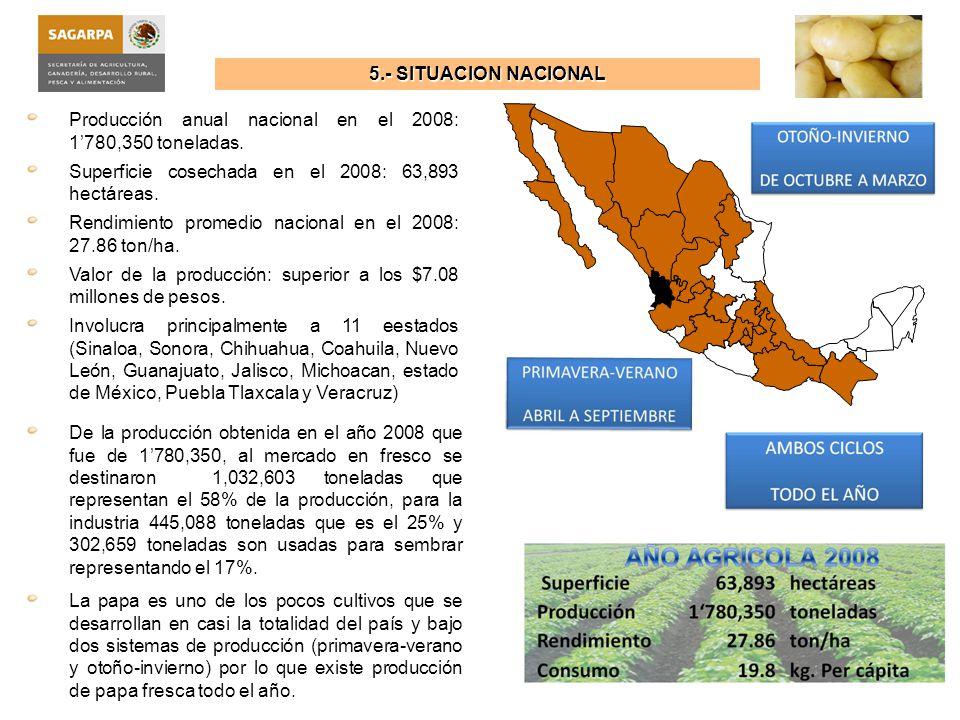 5.- SITUACION NACIONAL Los principales estados productores en el 2008 por orden de importancia fueron: Sinaloa 20.5%, Sonora el 19.4%, seguido de Chihuahua con el 10.3%, Estado de México con 9.1%y Nuevo León con el 7.6%, quienes concentraron el 66.9% de la producción nacional.