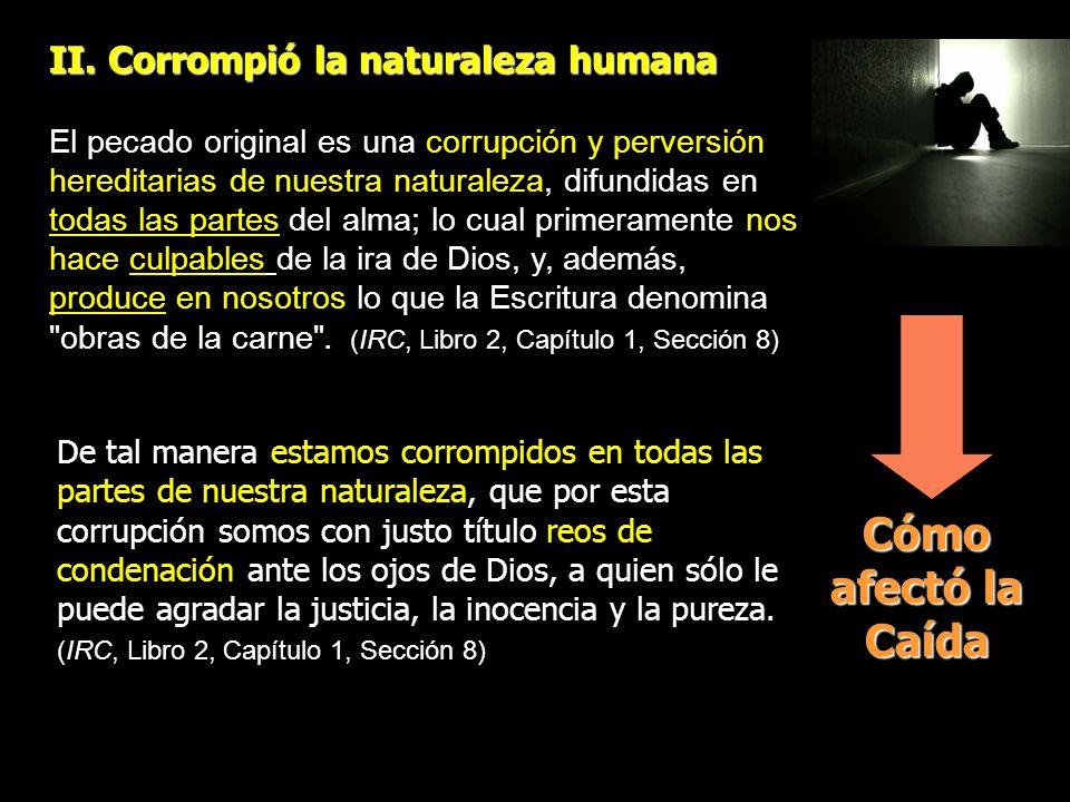 Cómo afectó la Caída II. Corrompió la naturaleza humana El pecado original es una corrupción y perversión hereditarias de nuestra naturaleza, difundid