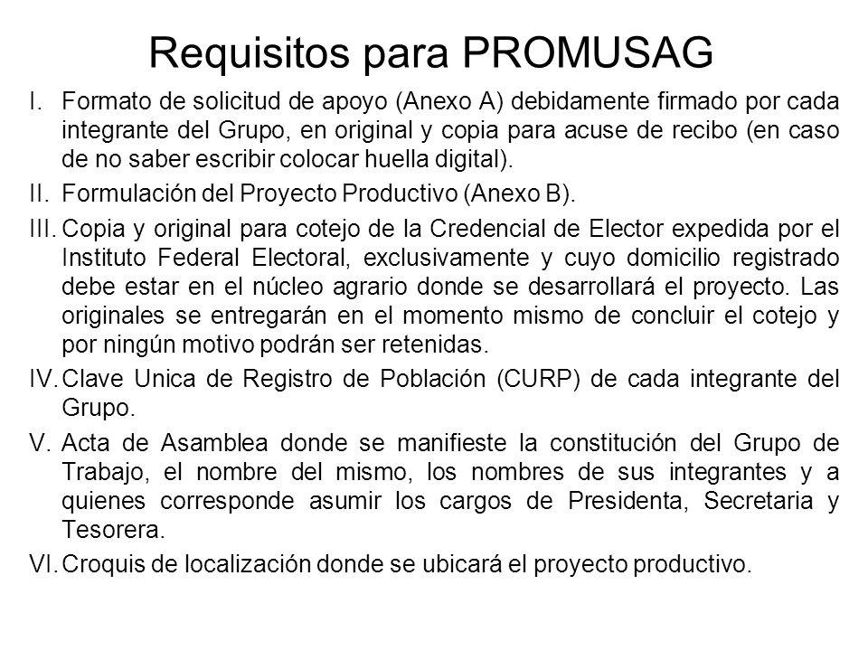 Requisitos para PROMUSAG I.Formato de solicitud de apoyo (Anexo A) debidamente firmado por cada integrante del Grupo, en original y copia para acuse d
