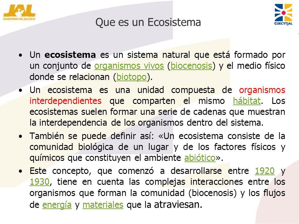 Que es un Ecosistema Un ecosistema es un sistema natural que está formado por un conjunto de organismos vivos (biocenosis) y el medio físico donde se