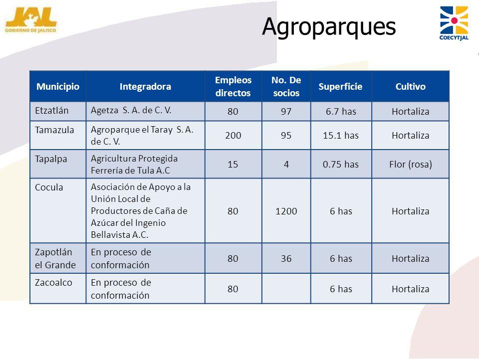 Agroparques MunicipioIntegradora Empleos directos No. De socios SuperficieCultivo Etzatlán Agetza S. A. de C. V. 80976.7 hasHortaliza Tamazula Agropar