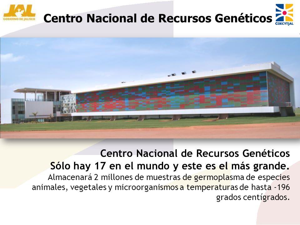 Centro Nacional de Recursos Genéticos Sólo hay 17 en el mundo y este es el más grande. Almacenará 2 millones de muestras de germoplasma de especies an