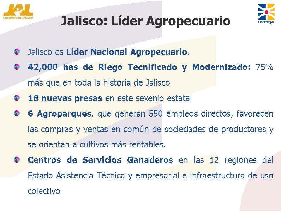 Jalisco es Líder Nacional Agropecuario. 42,000 has de Riego Tecnificado y Modernizado: 75% más que en toda la historia de Jalisco 18 nuevas presas en