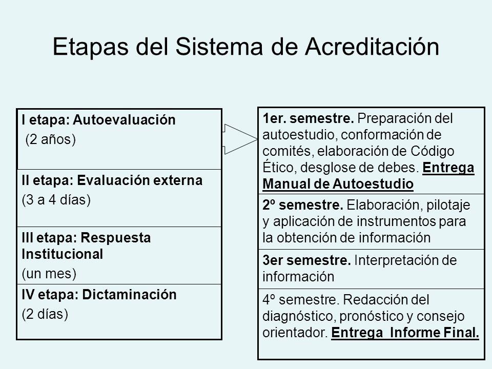 Etapas del Sistema de Acreditación IV etapa: Dictaminación (2 días) III etapa: Respuesta Institucional (un mes) II etapa: Evaluación externa (3 a 4 días) I etapa: Autoevaluación (2 años) 4º semestre.