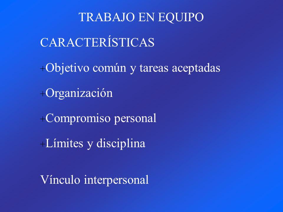 TRABAJO EN EQUIPO CARACTERÍSTICAS + Organización + Objetivo común y tareas aceptadas + Compromiso personal + Límites y disciplina Vínculo interpersonal