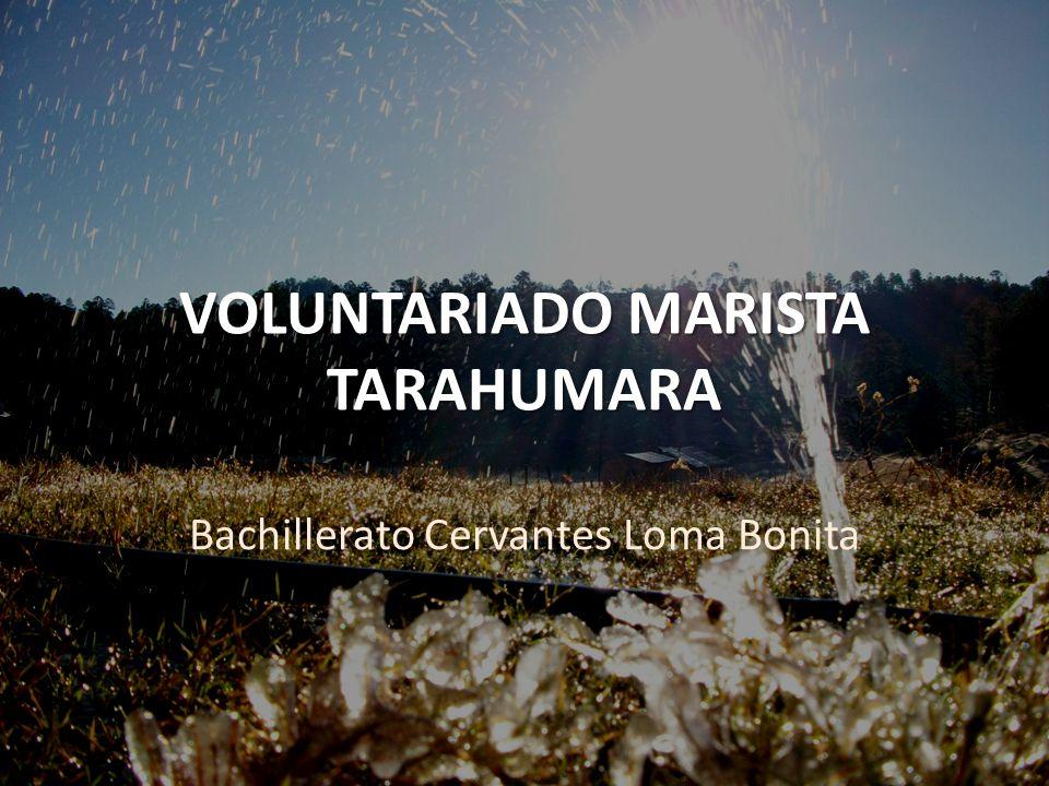 VOLUNTARIADO MARISTA TARAHUMARA Bachillerato Cervantes Loma Bonita
