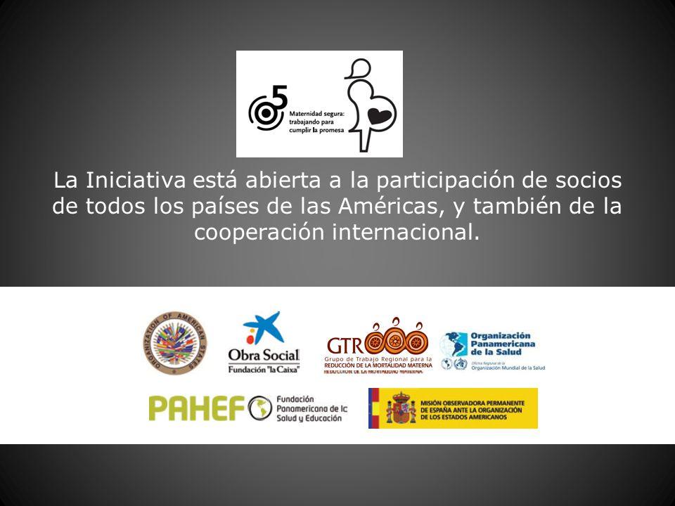 La Iniciativa está abierta a la participación de socios de todos los países de las Américas, y también de la cooperación internacional.