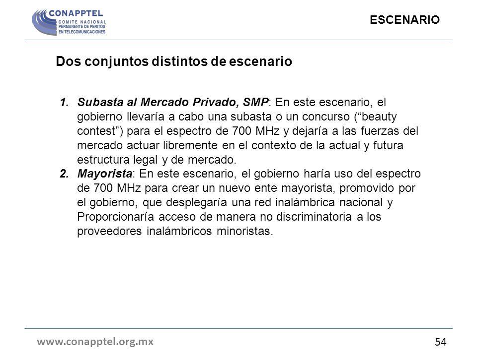 Dos conjuntos distintos de escenario www.conapptel.org.mx 54 ESCENARIO 1.Subasta al Mercado Privado, SMP: En este escenario, el gobierno llevaría a ca