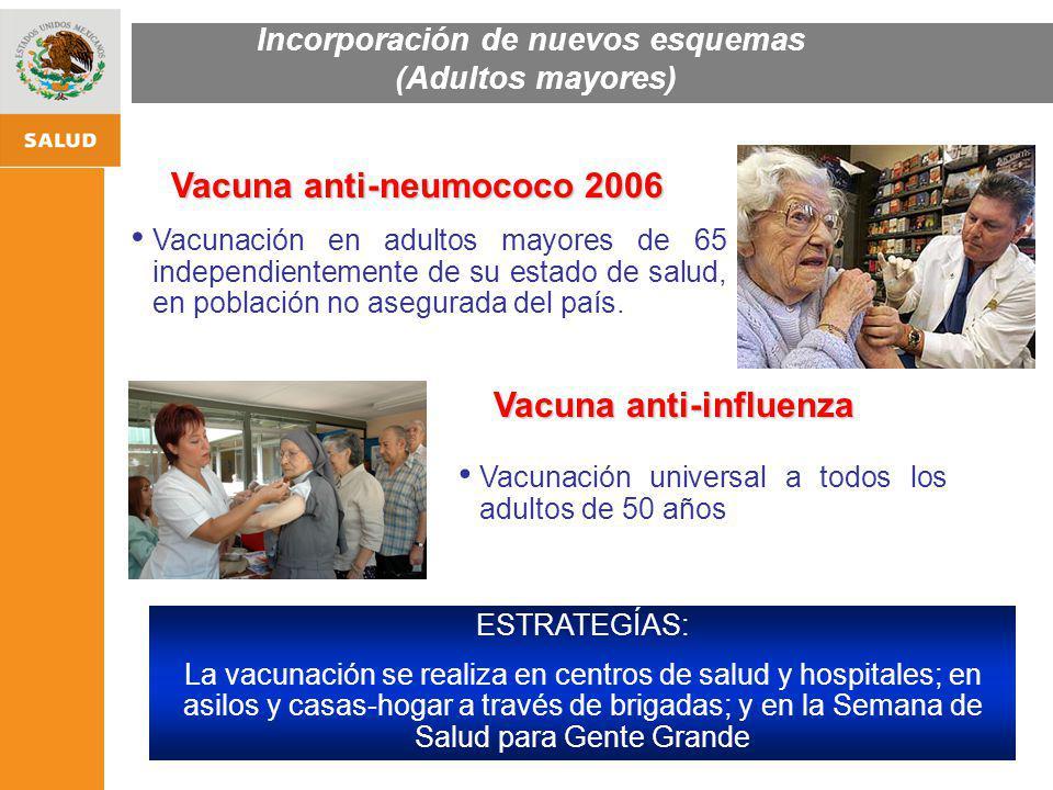 ESTRATEGIA NACIONAL DE PROMOCIÓN Y PREVENCIÓN PARA UNA MEJOR SALUD Vacuna anti-neumococo 2006 Vacuna anti-influenza Vacunación en adultos mayores de 6