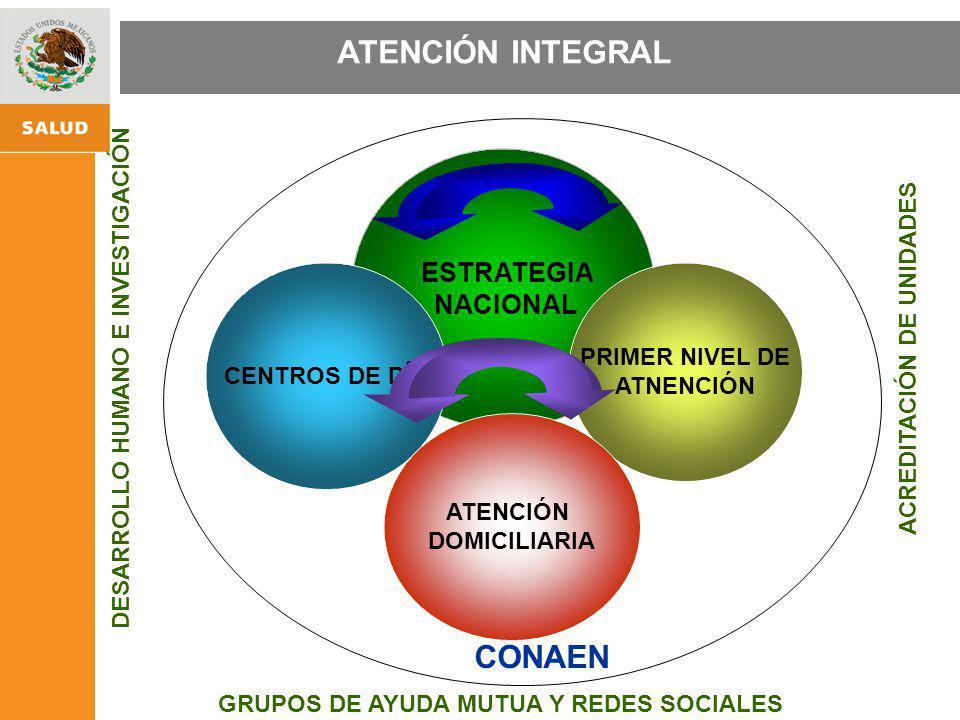 ESTRATEGIA NACIONAL DE PROMOCIÓN Y PREVENCIÓN PARA UNA MEJOR SALUD ESTRATEGIA NACIONAL CENTROS DE DÍA PRIMER NIVEL DE ATNENCIÓN GRUPOS DE AYUDA MUTUA