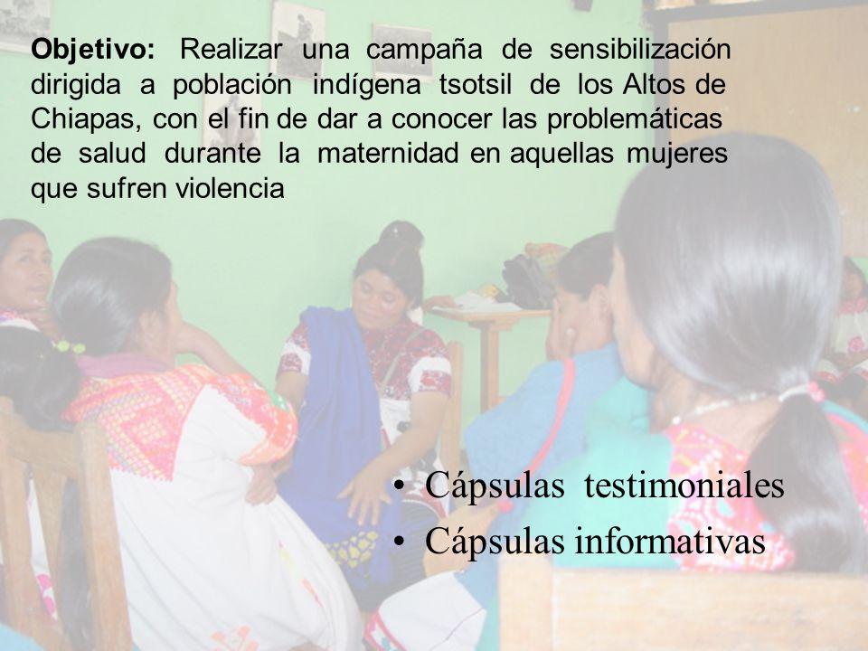 Metodología Testimonios grabados a partir de los talleres que se realizan para probar un modelo de capacitación para mujeres indígenas analfabetas, con el fin de hacer la detección, documentación, evaluación y plan de seguridad en mujeres que sufren violencia doméstica durante la maternidad