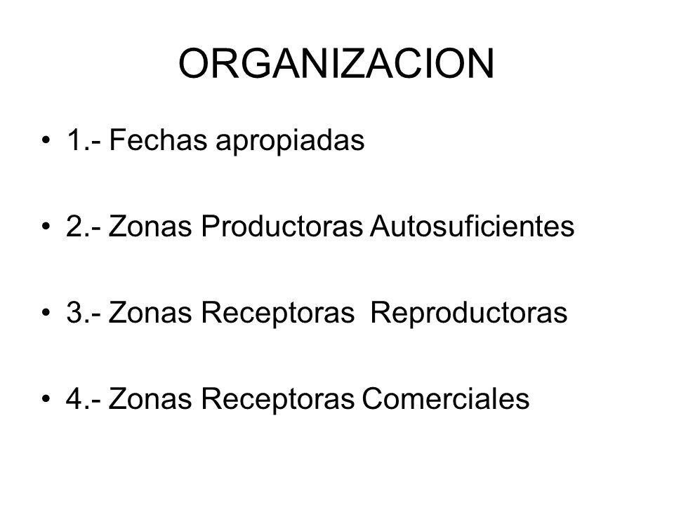 ORGANIZACION 1.- Fechas apropiadas 2.- Zonas Productoras Autosuficientes 3.- Zonas Receptoras Reproductoras 4.- Zonas Receptoras Comerciales
