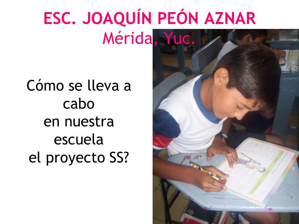 ESC. JOAQUÍN PEÓN AZNAR Mérida, Yuc. Cómo se lleva a cabo en nuestra escuela el proyecto SS?