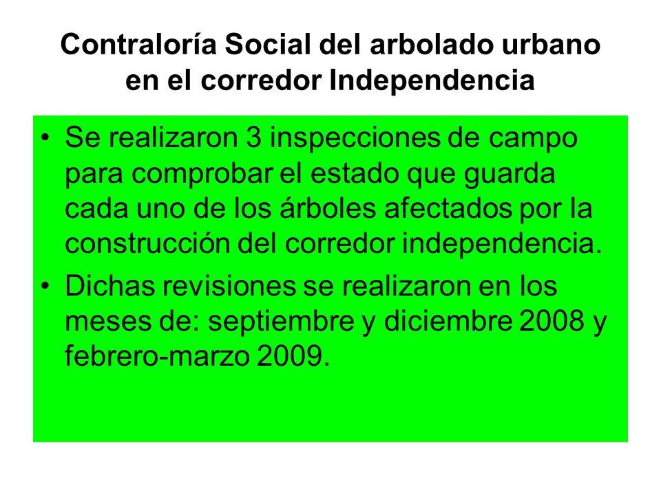 Contraloría Social del arbolado urbano en el corredor Independencia Se realizaron 3 inspecciones de campo para comprobar el estado que guarda cada uno