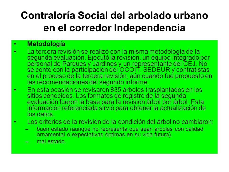 Contraloría Social del arbolado urbano en el corredor Independencia Metodología La tercera revisión se realizó con la misma metodología de la segunda