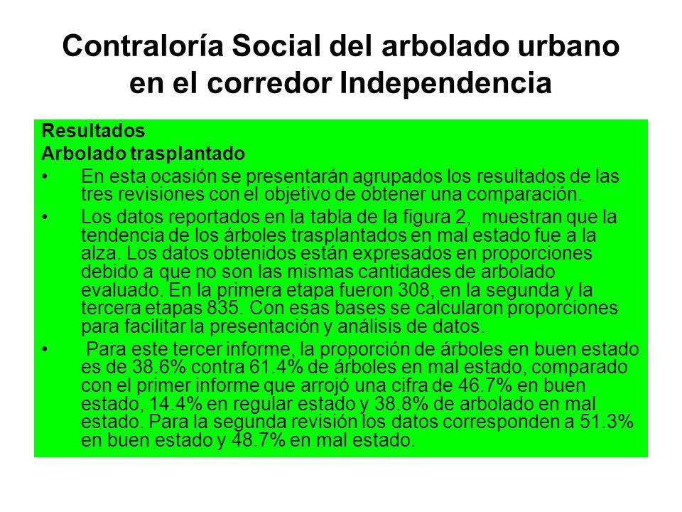 Contraloría Social del arbolado urbano en el corredor Independencia Resultados Arbolado trasplantado En esta ocasión se presentarán agrupados los resu