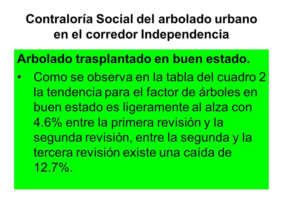 Contraloría Social del arbolado urbano en el corredor Independencia Arbolado trasplantado en buen estado. Como se observa en la tabla del cuadro 2 la