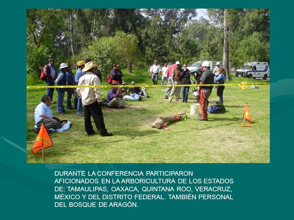 DURANTE LA CONFERENCIA PARTICIPARON AFICIONADOS EN LA ARBORICULTURA DE LOS ESTADOS DE: TAMAULIPAS, OAXACA, QUINTANA ROO, VERACRUZ, MÉXICO Y DEL DISTRI