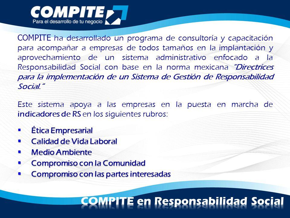 COMPITE ha desarrollado un programa de consultoría y capacitación para acompañar a empresas de todos tamaños en la implantación y aprovechamiento de u
