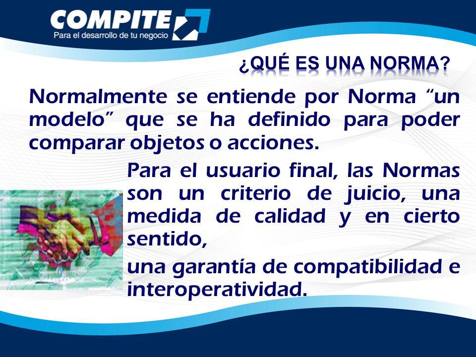 Normalmente se entiende por Norma un modelo que se ha definido para poder comparar objetos o acciones. Para el usuario final, las Normas son un criter