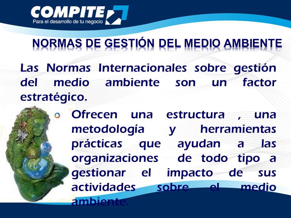 Las Normas Internacionales sobre gestión del medio ambiente son un factor estratégico. Ofrecen una estructura, una metodología y herramientas práctica
