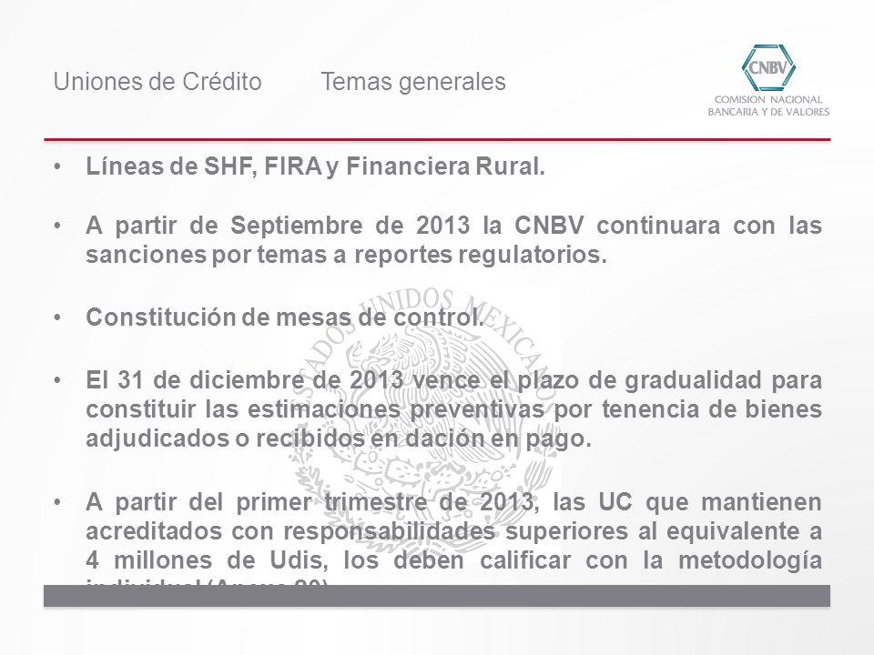 Líneas de SHF, FIRA y Financiera Rural. A partir de Septiembre de 2013 la CNBV continuara con las sanciones por temas a reportes regulatorios. Constit