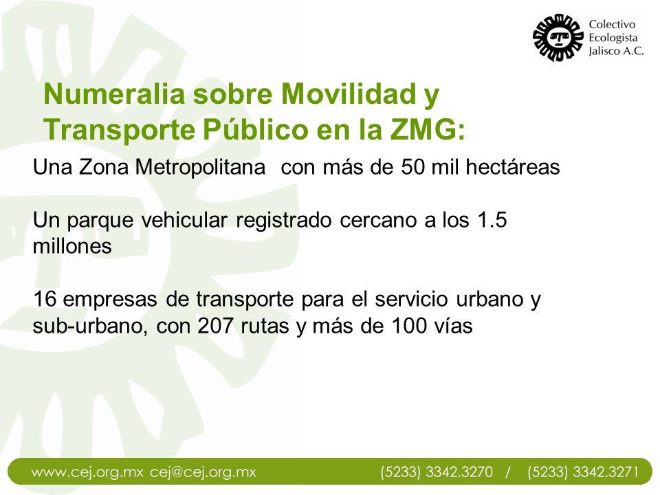 TRANSPORTE PÚBLICO El transporte público en la ZMG está compuesto por 120 rutas de camiones urbanos que a su vez se dividen en 236 rutas, 1 ruta de trolebús, 1 línea de Macrobus y 2 líneas de tren ligero.