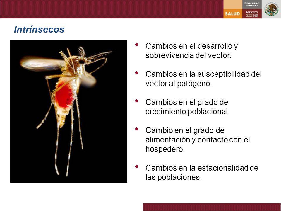 Intrínsecos Cambios en el desarrollo y sobrevivencia del vector. Cambios en la susceptibilidad del vector al patógeno. Cambios en el grado de crecimie