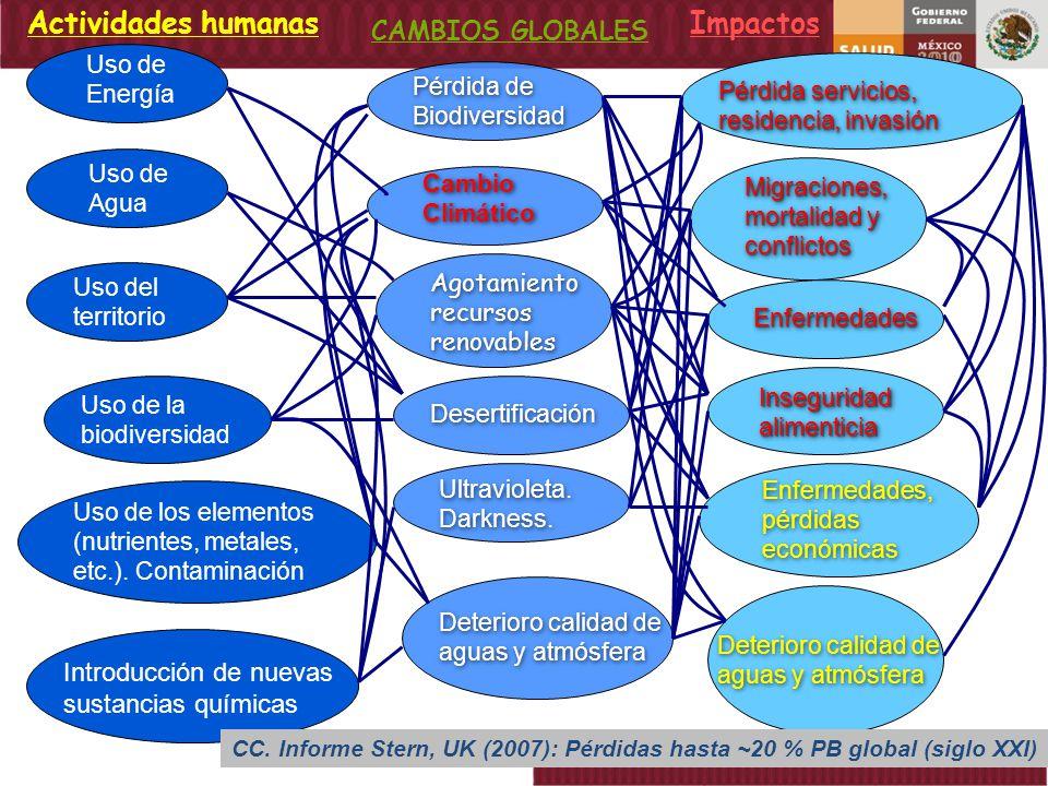 Porcentaje de Identificación de Serotipos de Dengue México 1995 -2008* DENV-1 DENV-2 DENV-3 DENV-4 * Preliminar a la semana 53.