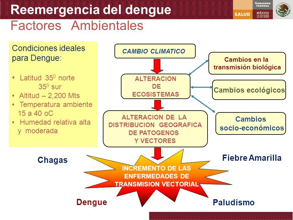 Reemergencia del dengue Factores Ambientales CAMBIO CLIMATICO INCREMENTO DE LAS ENFERMEDADES DE TRANSMISION VECTORIAL ALTERACION DE ECOSISTEMAS ALTERA