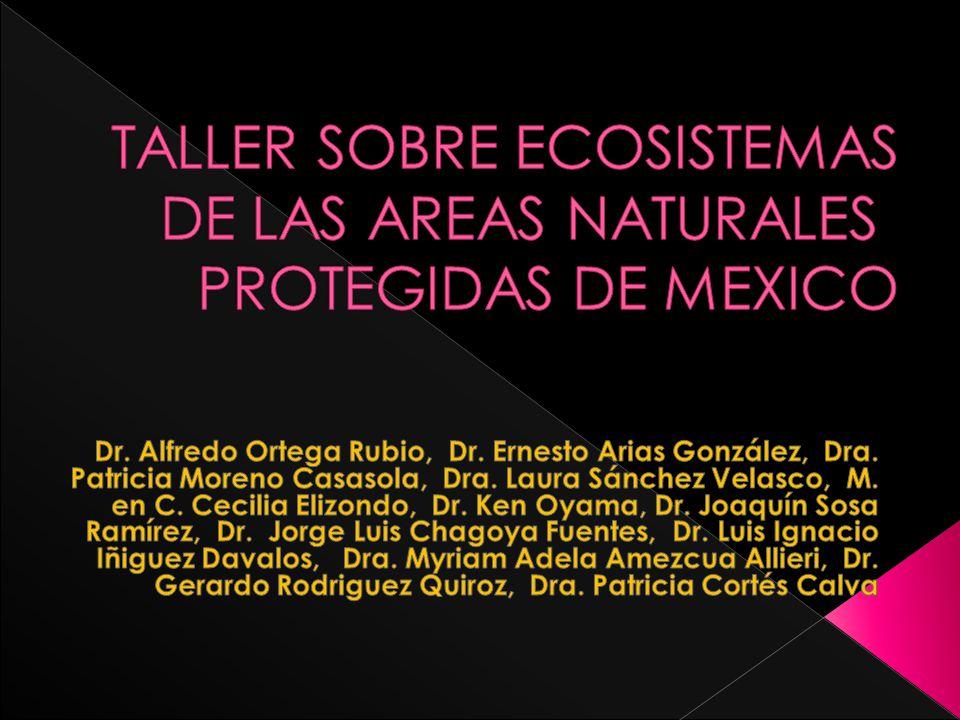 Dr.Alfredo Ortega Rubio, Dr. Ernesto Arias González, Dra.