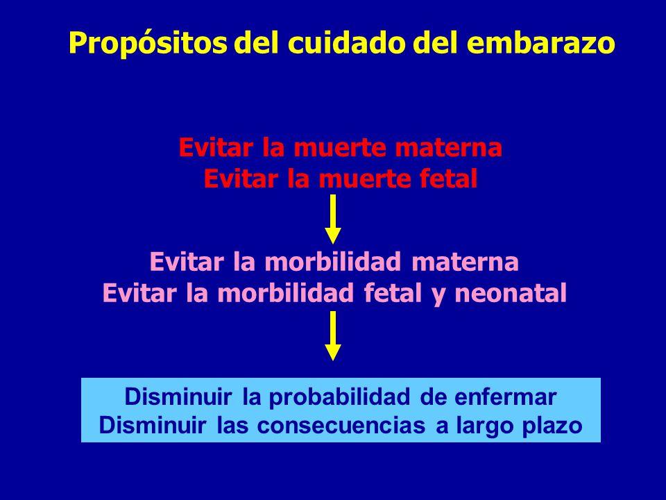 Propósitos del cuidado del embarazo Evitar la muerte materna Evitar la muerte fetal Evitar la morbilidad materna Evitar la morbilidad fetal y neonatal Disminuir la probabilidad de enfermar Disminuir las consecuencias a largo plazo