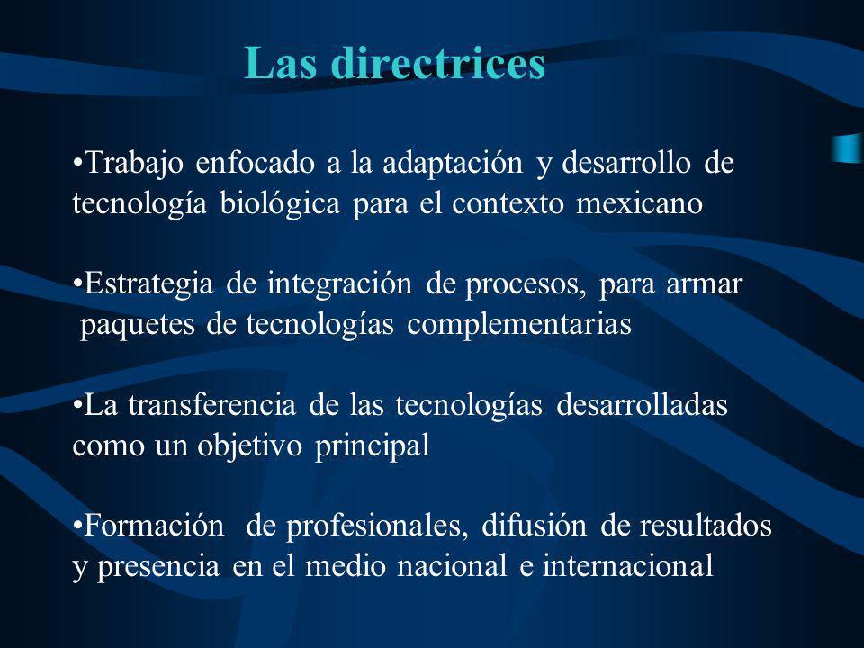 Trabajo enfocado a la adaptación y desarrollo de tecnología biológica para el contexto mexicano Estrategia de integración de procesos, para armar paqu