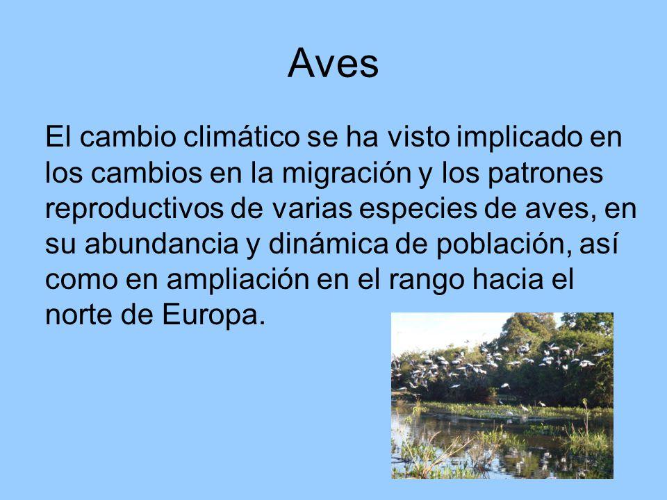 Aves El cambio climático se ha visto implicado en los cambios en la migración y los patrones reproductivos de varias especies de aves, en su abundancia y dinámica de población, así como en ampliación en el rango hacia el norte de Europa.