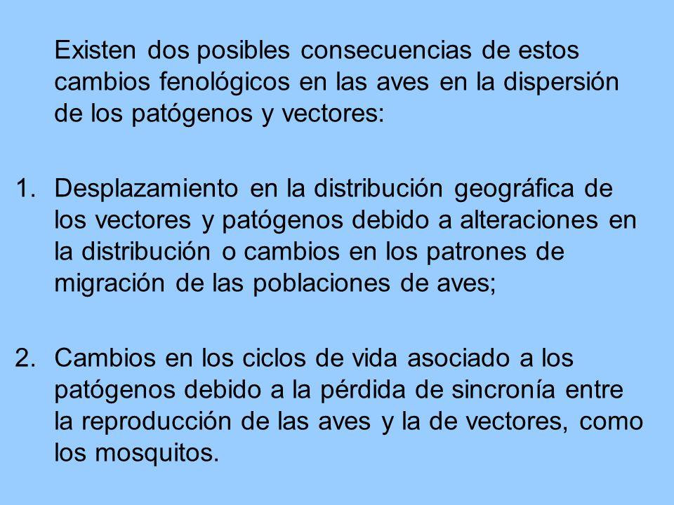Existen dos posibles consecuencias de estos cambios fenológicos en las aves en la dispersión de los patógenos y vectores: 1.Desplazamiento en la distribución geográfica de los vectores y patógenos debido a alteraciones en la distribución o cambios en los patrones de migración de las poblaciones de aves; 2.
