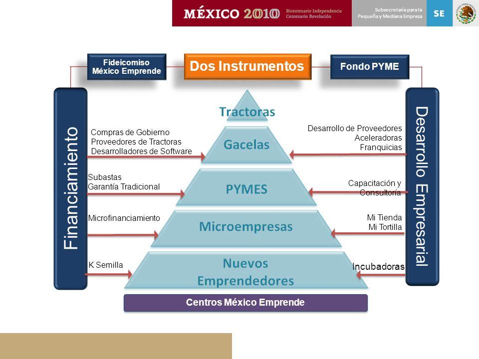 Subsecretaría para la Pequeña y Mediana Empresa Dos Instrumentos Financiamiento Desarrollo Empresarial Incubadoras Mi Tienda Mi Tortilla Capacitación