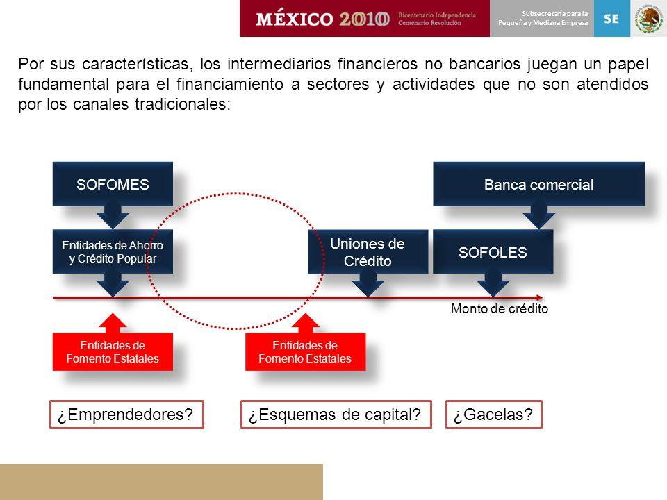 Subsecretaría para la Pequeña y Mediana Empresa Por sus características, los intermediarios financieros no bancarios juegan un papel fundamental para