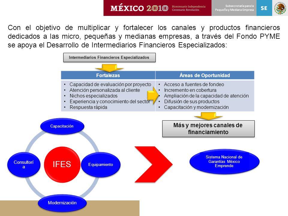 Subsecretaría para la Pequeña y Mediana Empresa Con el objetivo de multiplicar y fortalecer los canales y productos financieros dedicados a las micro,