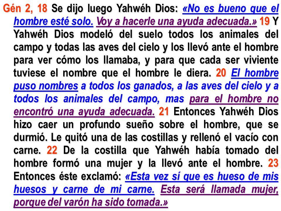 Gén 2, 18 Se dijo luego Yahwéh Dios: «No es bueno que el hombre esté solo. Voy a hacerle una ayuda adecuada.» 19 Y Yahwéh Dios modeló del suelo todos