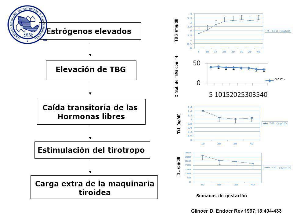 Estrógenos elevados Elevación de TBG Caída transitoria de las Hormonas libres Estimulación del tirotropo Carga extra de la maquinaria tiroidea TBG (mg/dl) Semanas de gestación % Sat.