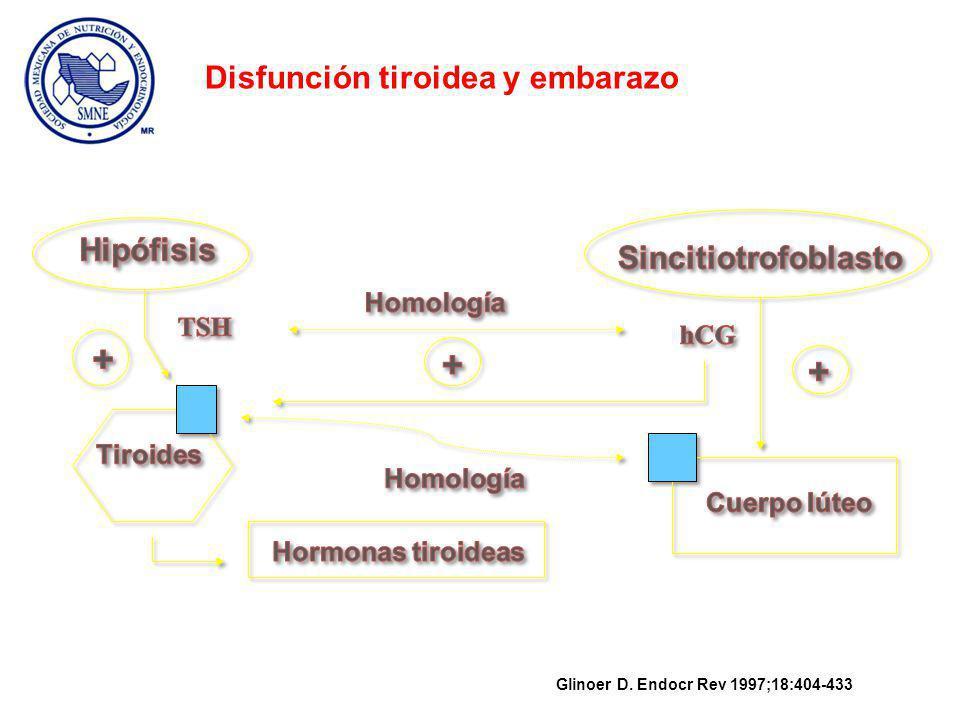 hCG (UI/Lx1000) Semanas de gestación Glinoer D.
