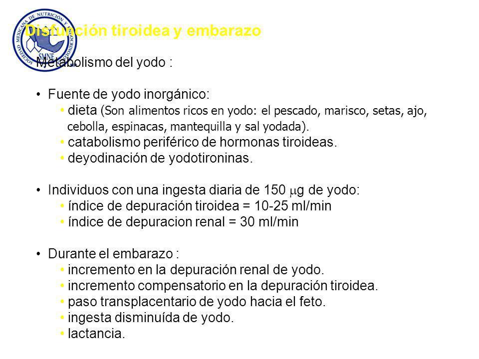 Metabolismo del yodo : Fuente de yodo inorgánico: dieta ( Son alimentos ricos en yodo: el pescado, marisco, setas, ajo, cebolla, espinacas, mantequilla y sal yodada).