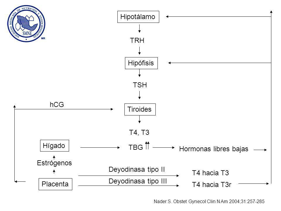 Hipotálamo TRH Hipófisis TSH Tiroides T4, T3 hCG Hígado TBG Hormonas libres bajas Estrógenos Placenta Deyodinasa tipo II Deyodinasa tipo III T4 hacia T3 T4 hacia T3r Nader S.
