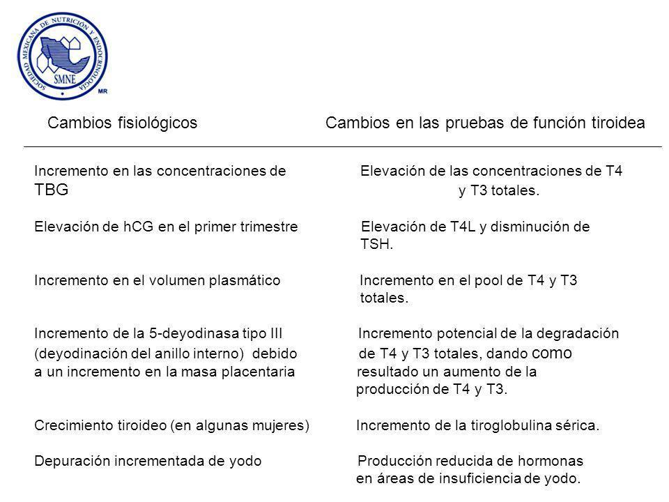 Cambios fisiológicos Cambios en las pruebas de función tiroidea Incremento en las concentraciones de Elevación de las concentraciones de T4 TBG y T3 totales.