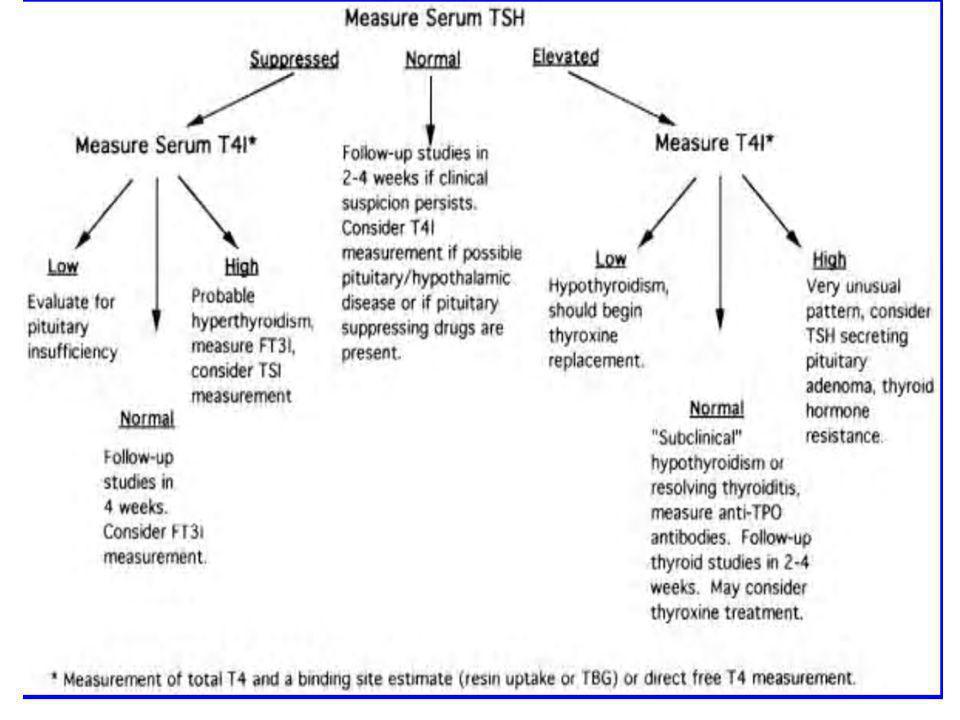 Conclusiones El estado tiroideo es frecuentemente evaluado durante el embarazo, tanto para investigar probables anormalidades tiroideas y para monitorizar el estado de una enfermedad tiroidea preexistente.