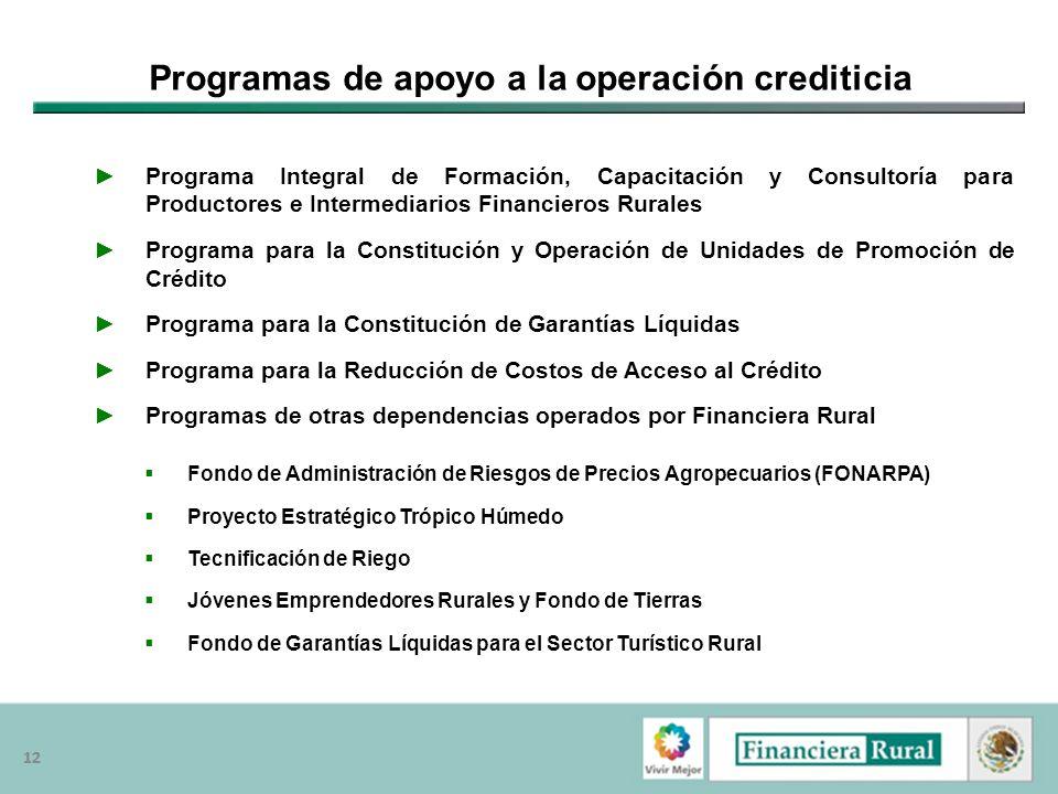 12 Programas de apoyo a la operación crediticia Programa Integral de Formación, Capacitación y Consultoría para Productores e Intermediarios Financier