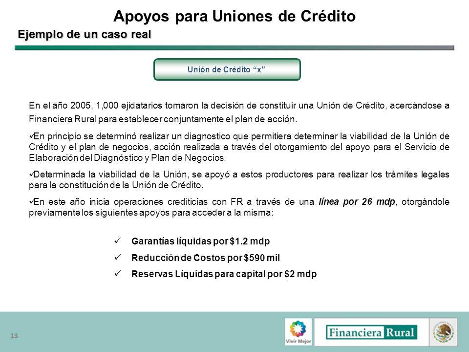13 Apoyos para Uniones de Crédito Unión de Crédito x Ejemplo de un caso real En el año 2005, 1,000 ejidatarios tomaron la decisión de constituir una U