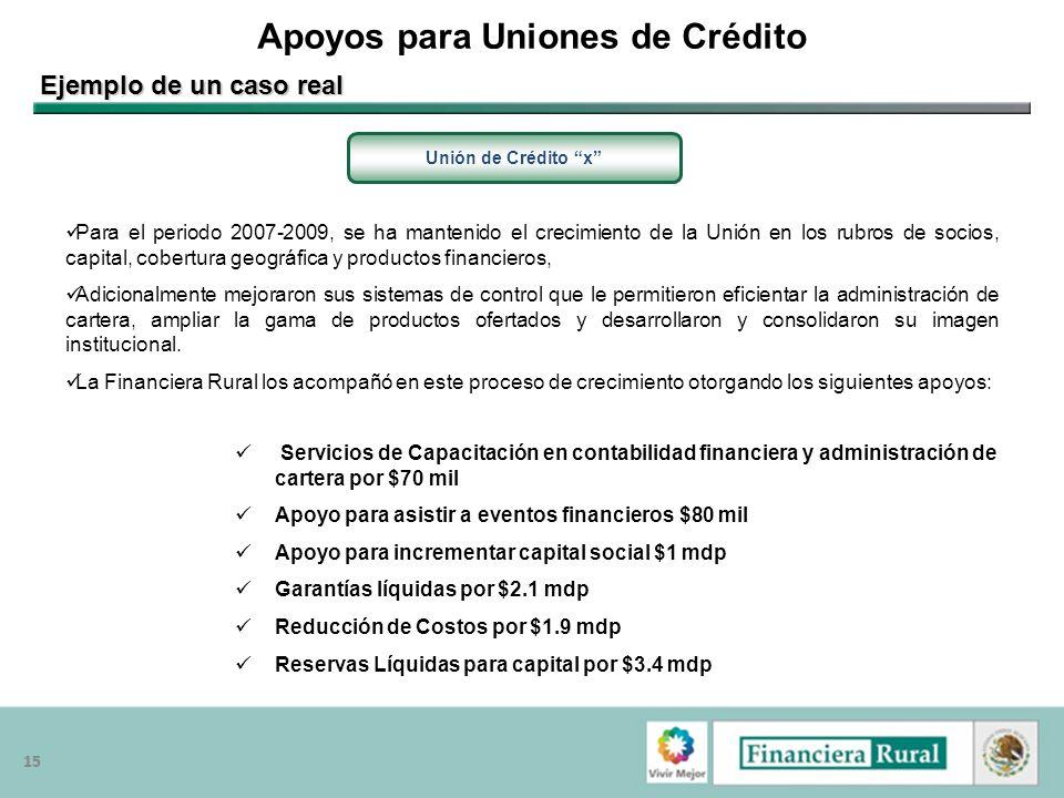 15 Apoyos para Uniones de Crédito Unión de Crédito x Ejemplo de un caso real Servicios de Capacitación en contabilidad financiera y administración de