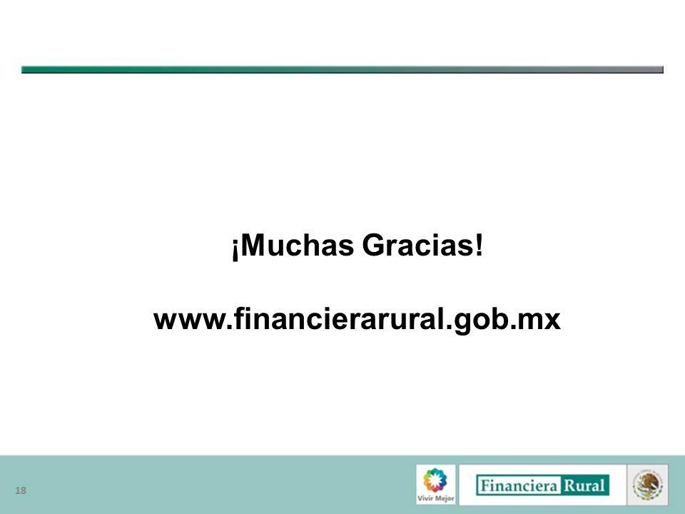 18 ¡Muchas Gracias! www.financierarural.gob.mx