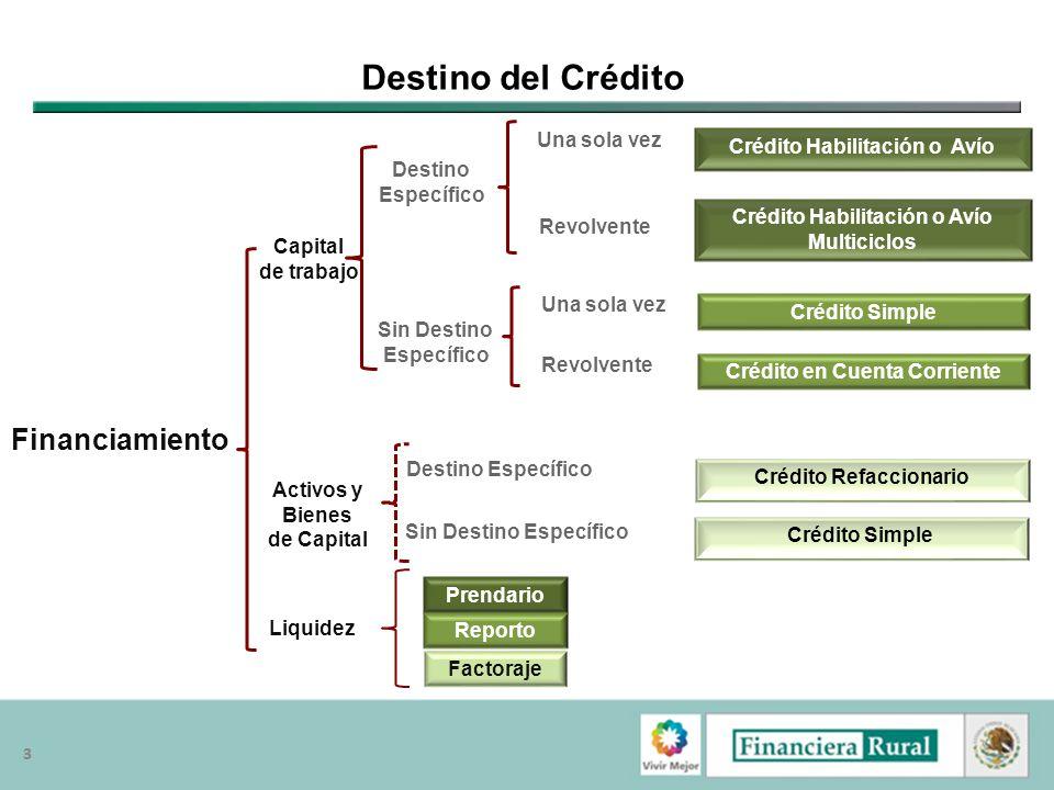 33 Destino del Crédito Financiamiento Crédito Habilitación o Avío Multiciclos Capital de trabajo Activos y Bienes de Capital Destino Específico Sin De